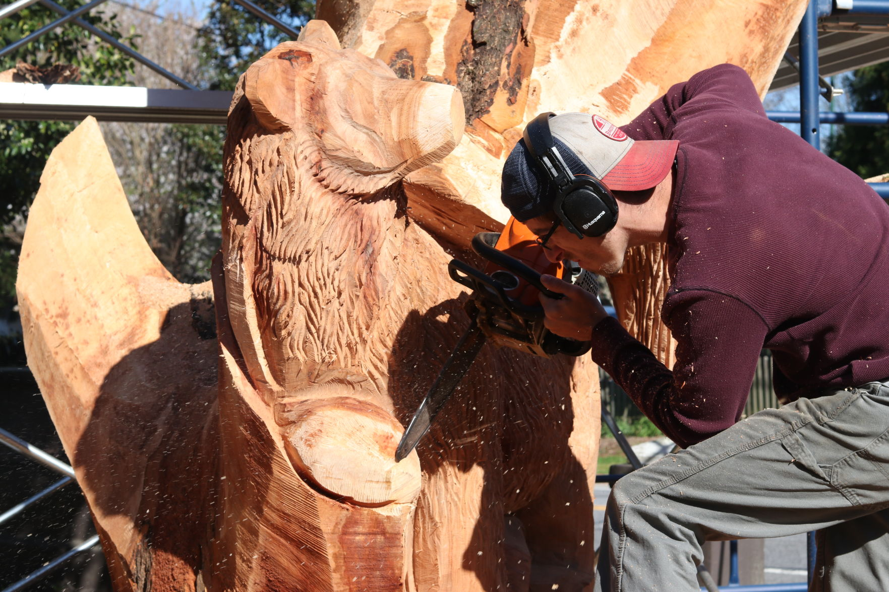 Echo chainsaw carving home facebook