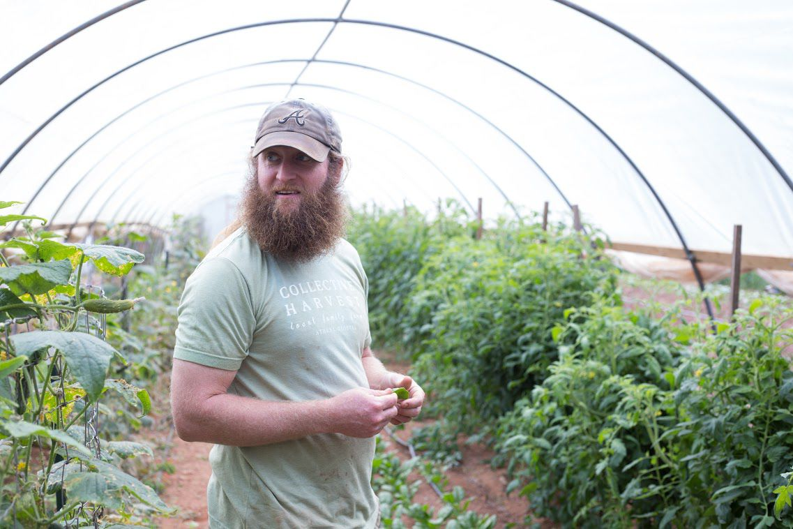 sustainable athens