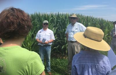 Corn Boil Researchers
