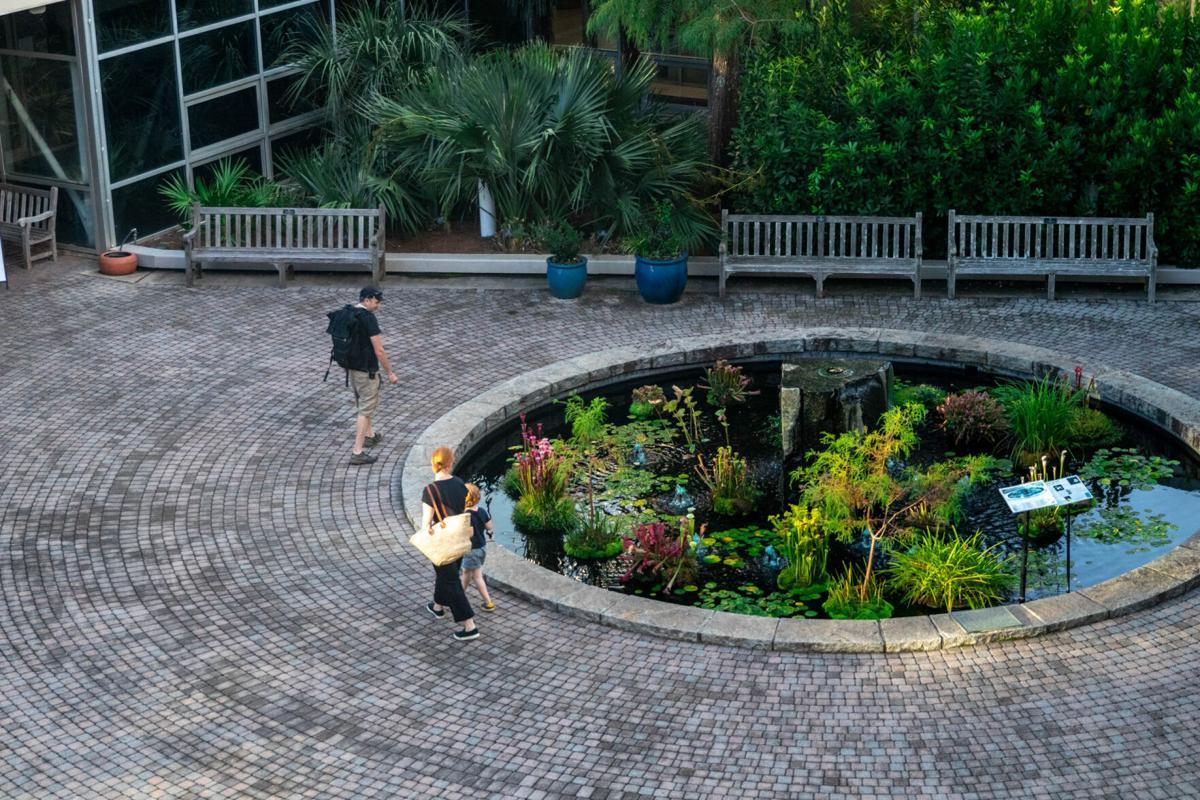 201022_SMH_botanicalgarden002.jpg