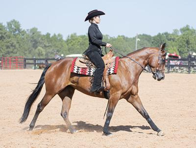 190920_ks_EquestrianScrim_0007.jpg