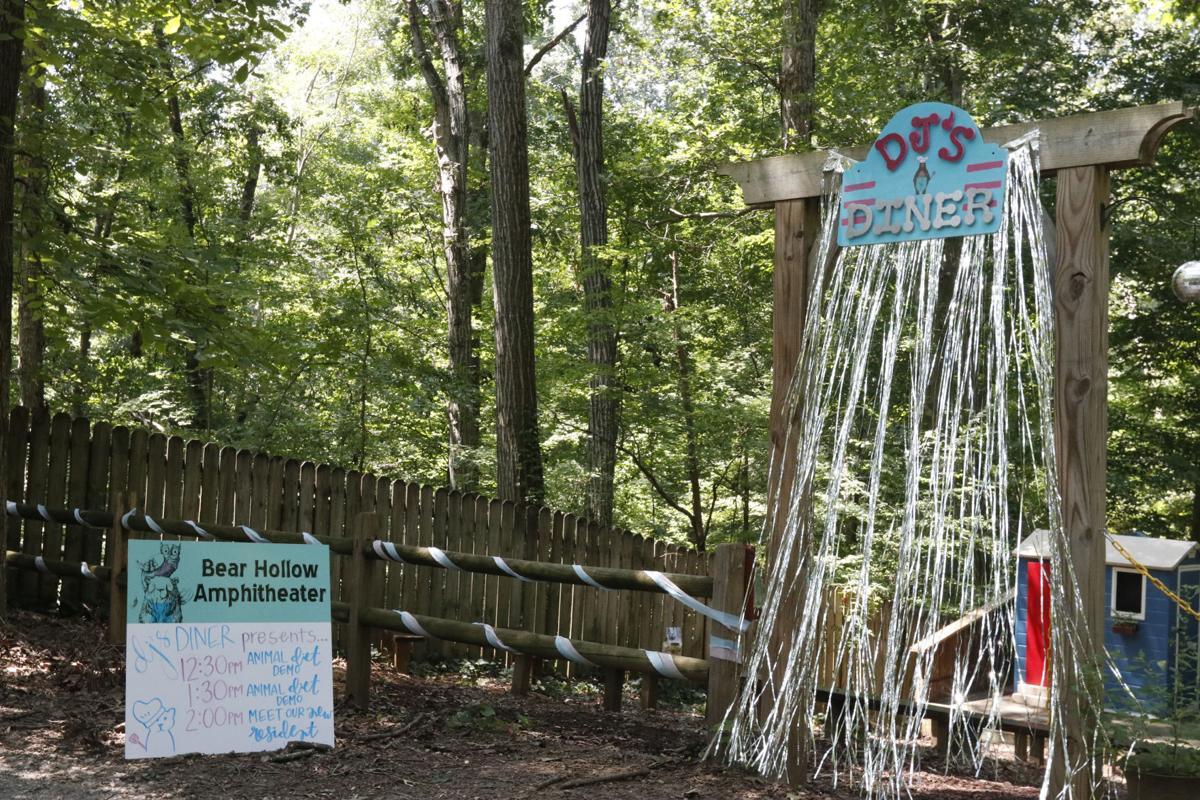 Bear Hollow Zoo Day 2018 2