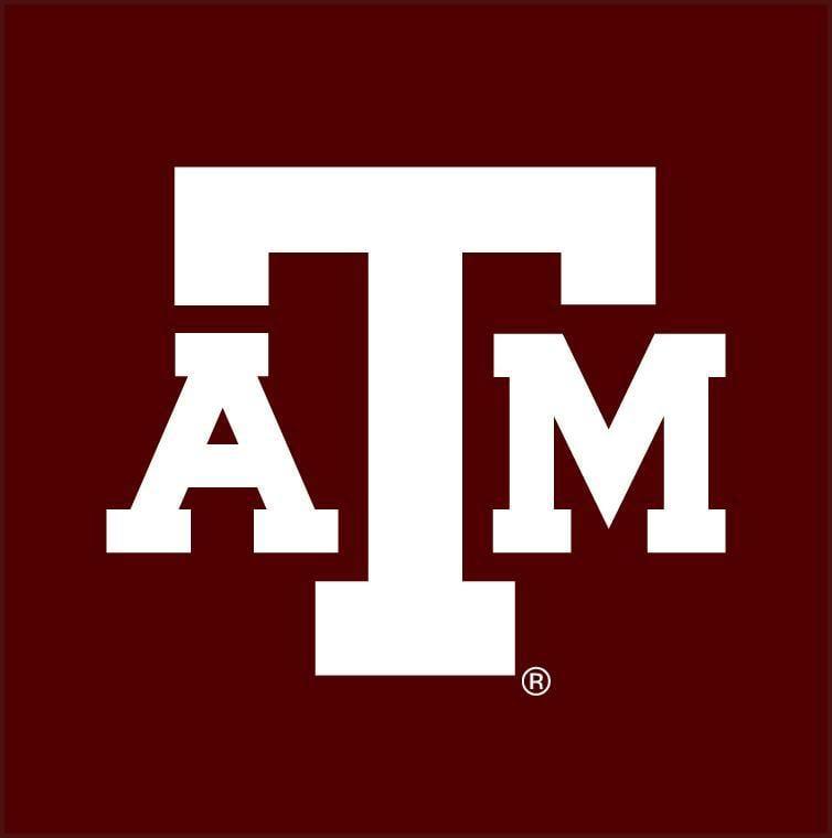 New Texas A&M Baseball Logo Ideas (Please Be Gentle)