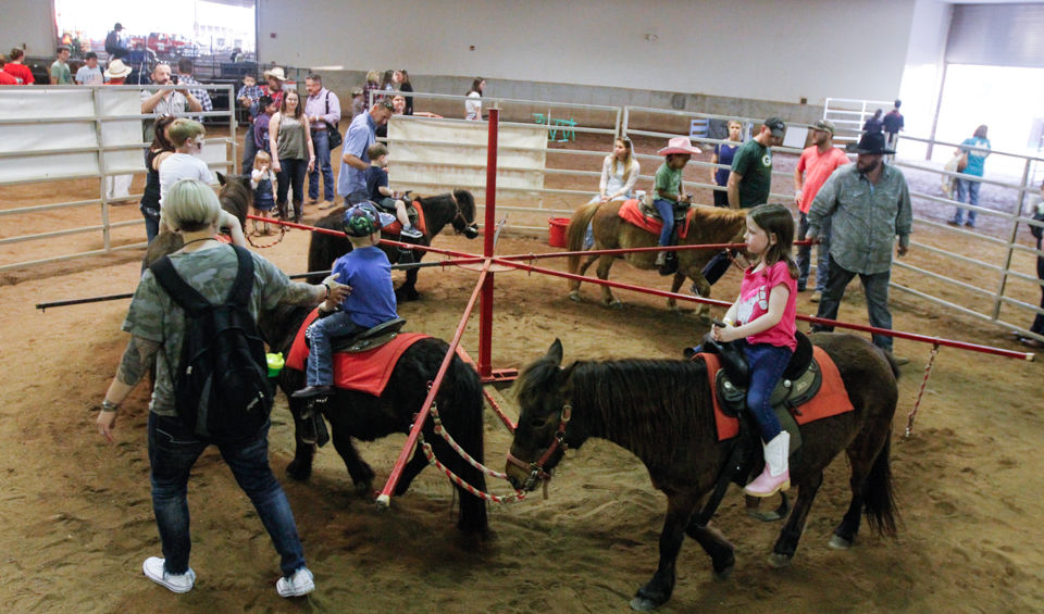 Photos Great Southland Stampede Rodeo Night 3 Culture