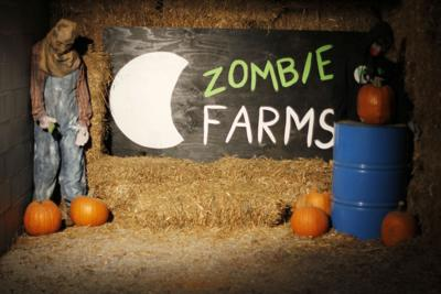 Zombie Farms
