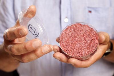 Stem Cell Burger