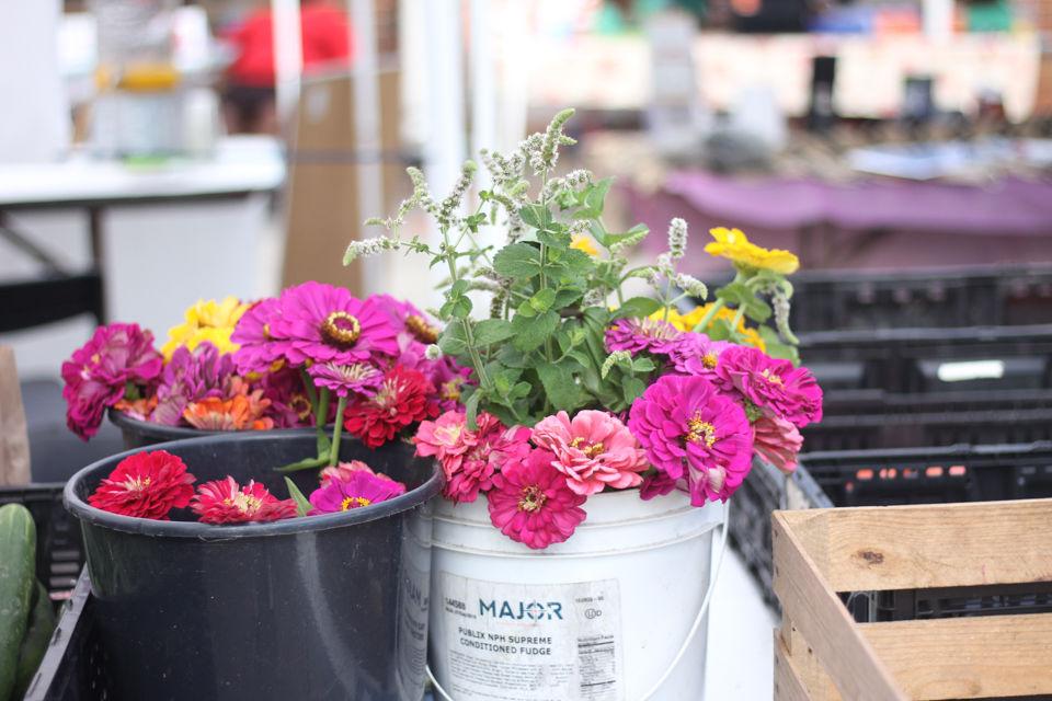 170715_reh_farmersmarket_0001.jpg