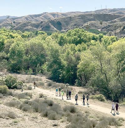 Hiking through San Timoteo Canyon