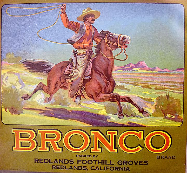ORANGE CRATES Bronco 6-21.jpg