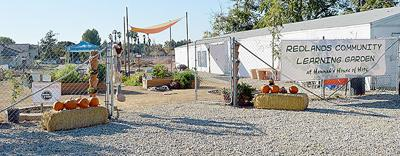 Homeless shelter includes a community garden.