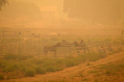 Strong Santa Ana winds fan Sandalwood Fire