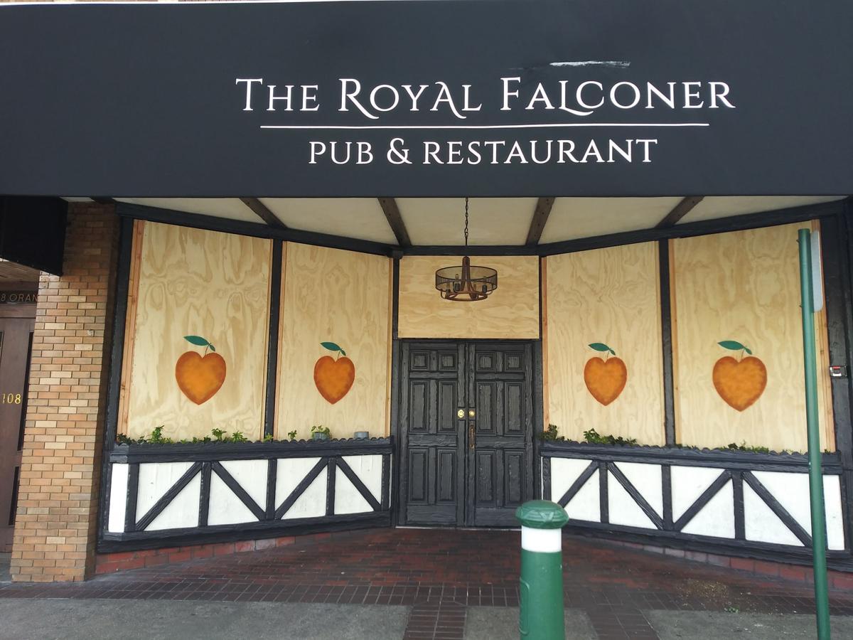 1 The Royal Falcom .jpg