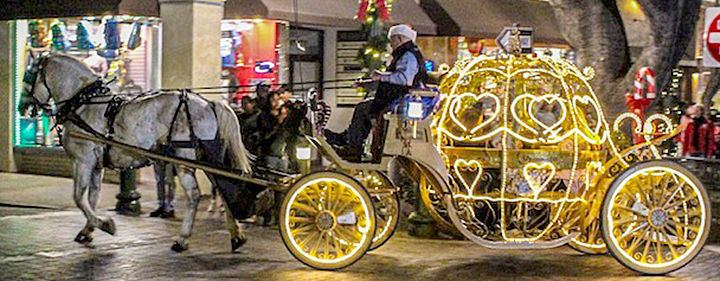 Free carriage rides were part of the holiday lighting festivities.