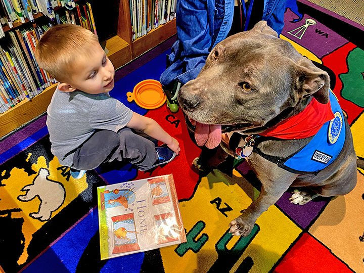 Reading with therapy dogs.