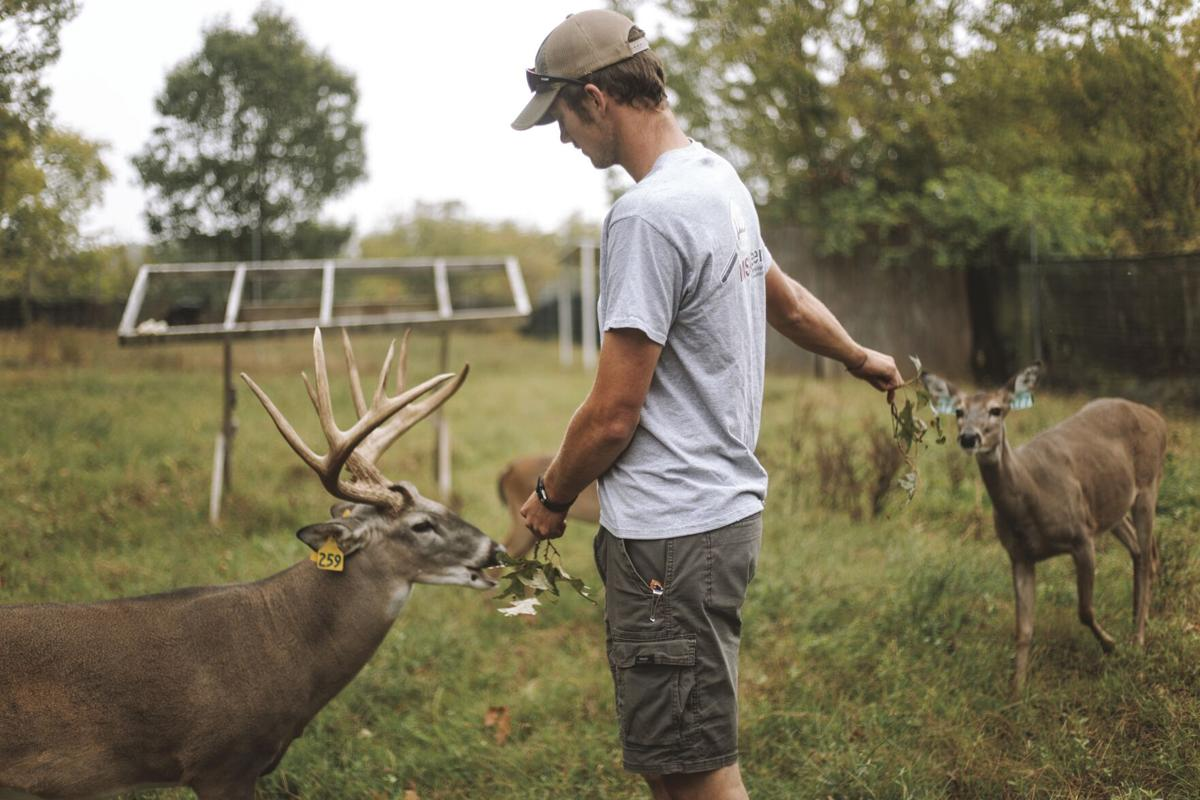 Deer lab seeks to bridge gap between hunters and science