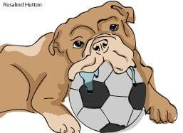 Soccer Bully