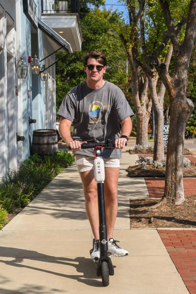Bird flocks to Starkville: is the return of the scooters a blessing or a menace?