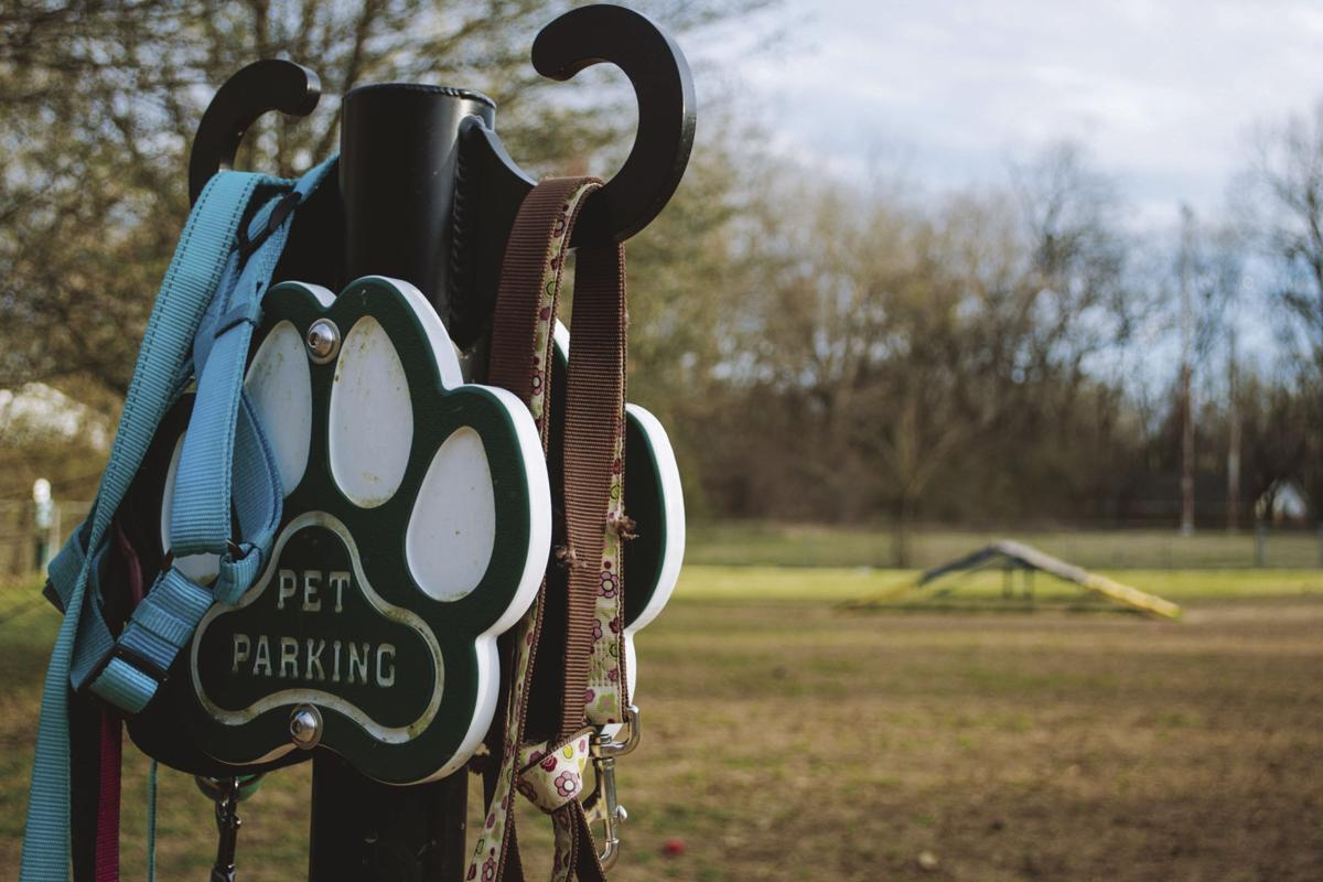 Parks and Recreation brings paws-itive changes to dog park