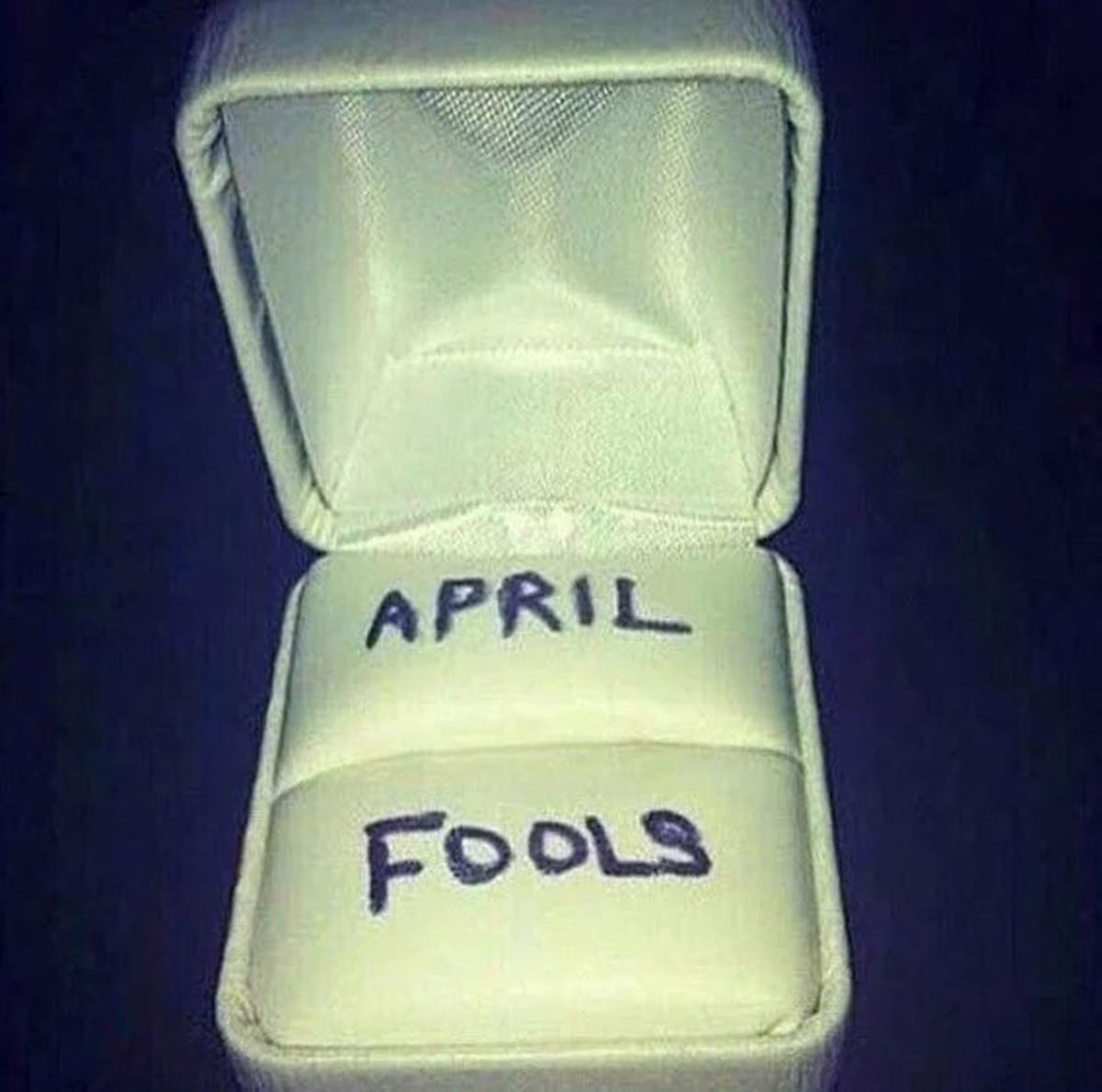 Fools ring case.jpg