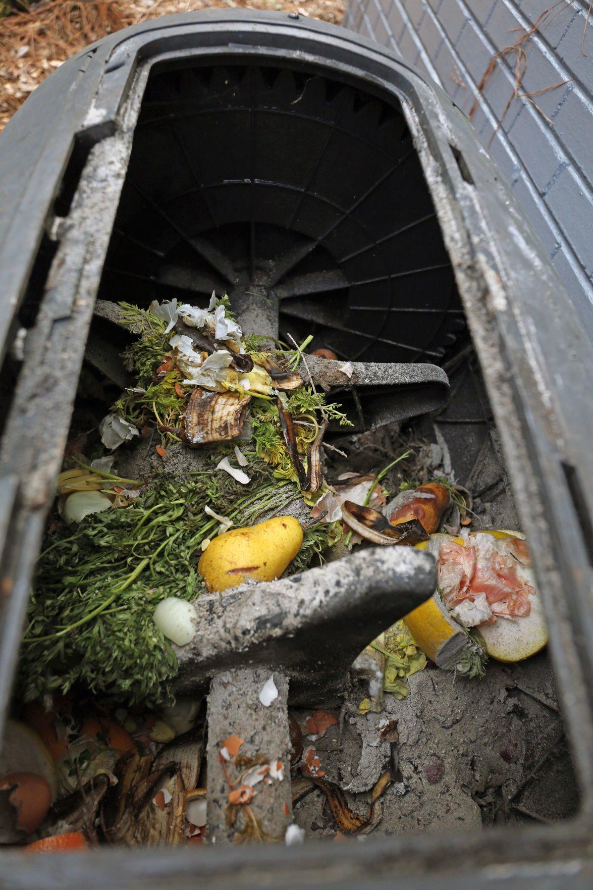 ECU graduate hoping to make composting easier in Greenville 6