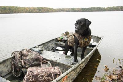 Duck Hunting - Missy McGaw