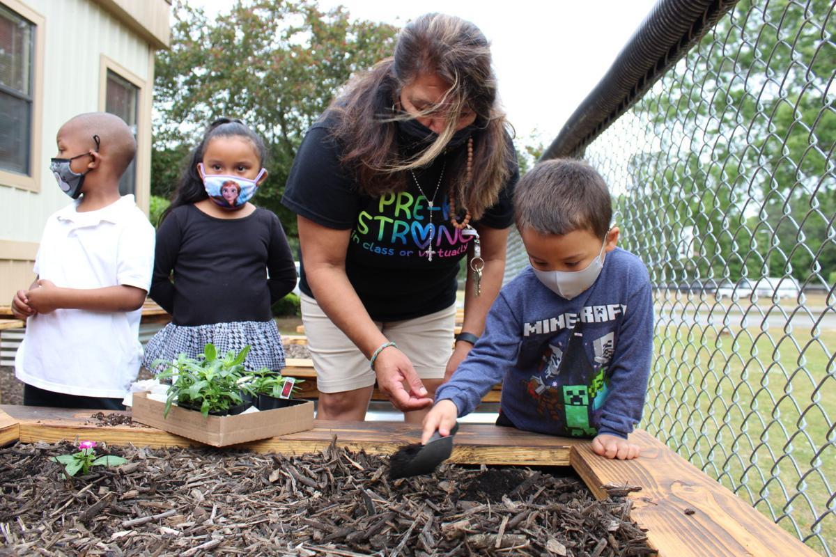GEC Student plants possibilities