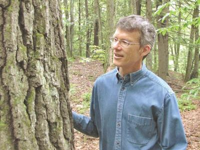 Brattleboro Museum & Art Center to host tree ID workshop