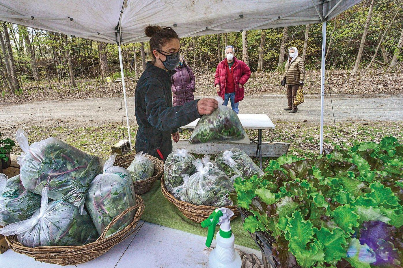 Farmers market reopens with safety in mind