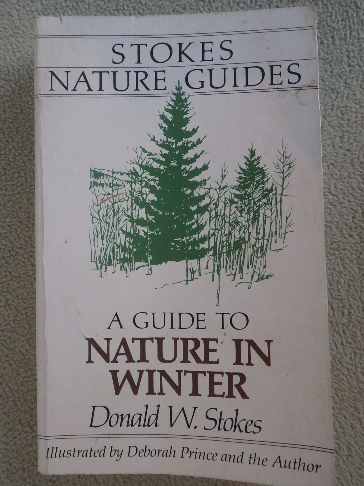 A great book for exploring the winter landscape.JPG