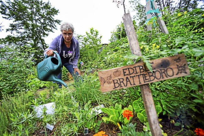 Brattleboro Food Co-op hosts 'Edible Brattleboro' garden