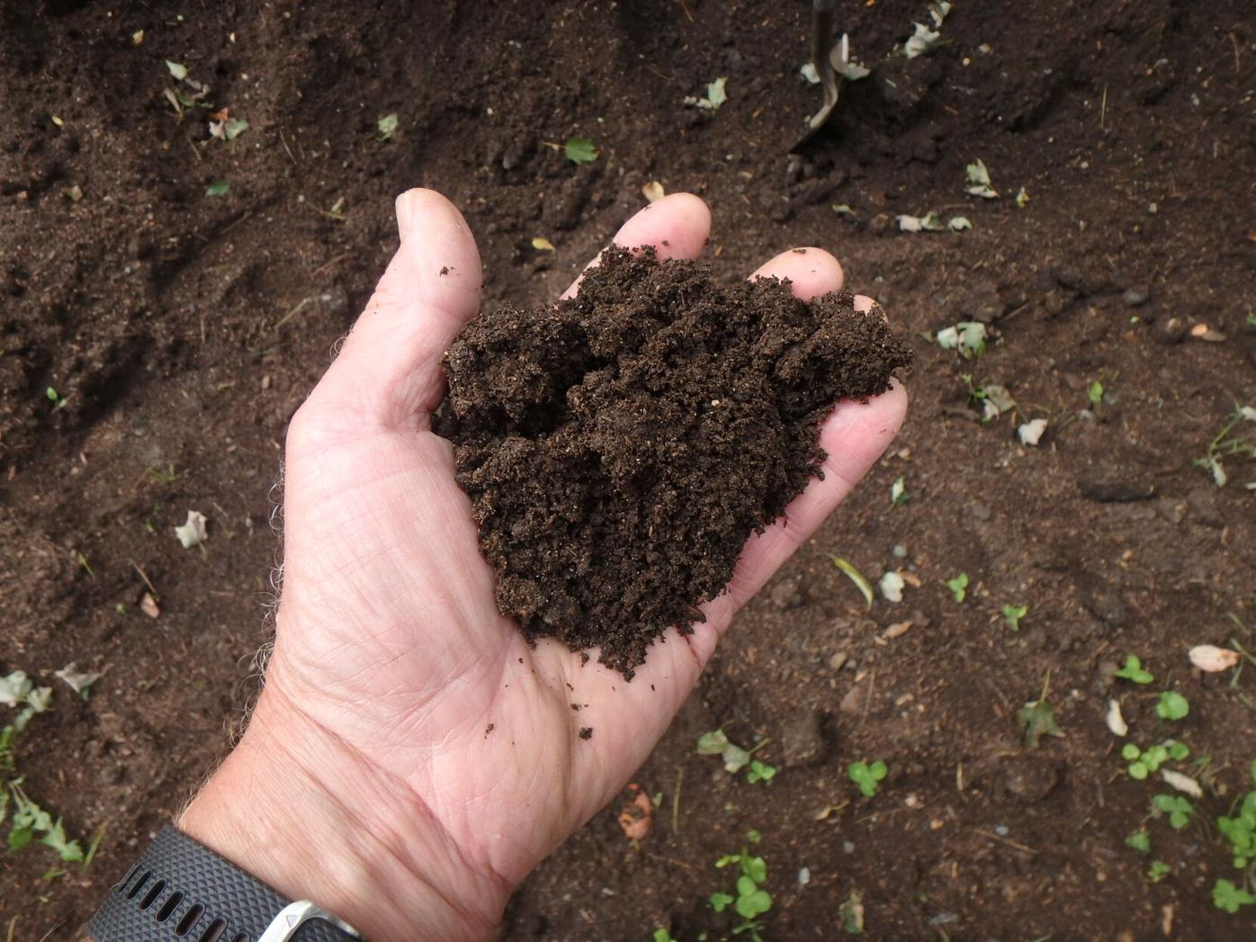 Good compost is worth its weight in gold.JPG