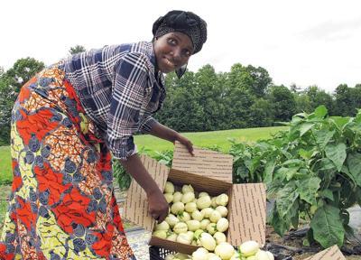 African refugee grows homeland's bitter eggplants in Vermont