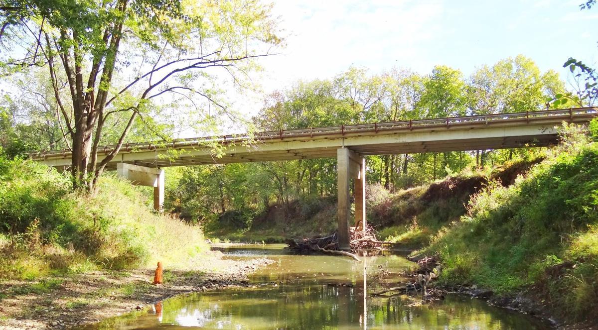 201028_mr_hedge_bridge_04