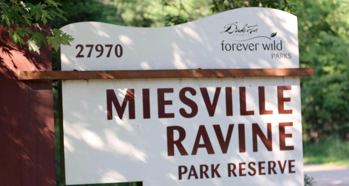 072921.O.CF.MiesvilleRavinePark1.JPG