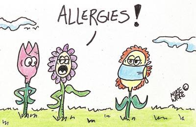 Editorial cartoon Mike Wilke allergies