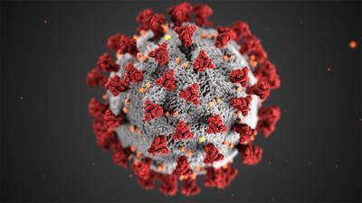 Coronavirus RTSA