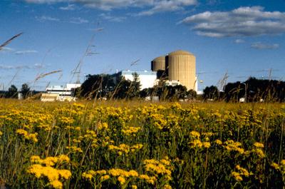 Prairie Island Nuclear Power Plant