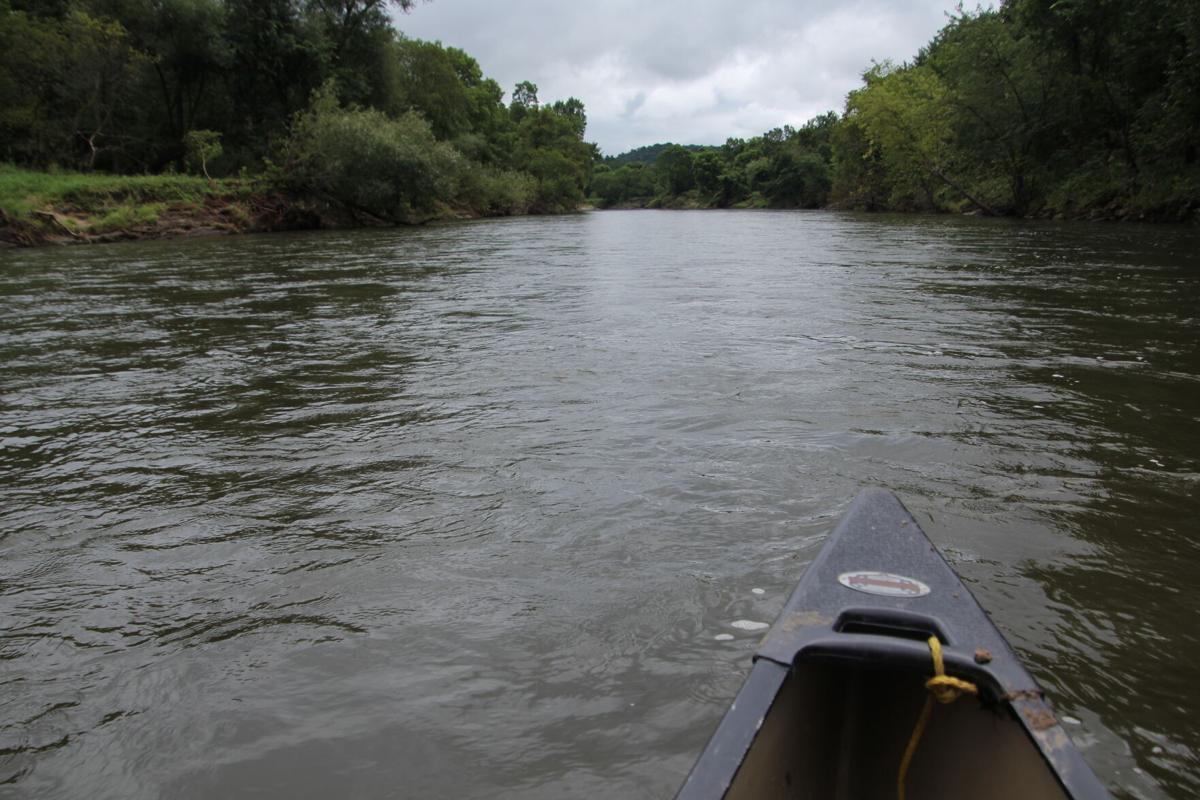 Zumbro River Ratz 1.JPG