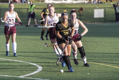 Supron Fitting In Nicely with Bryn Mawr I