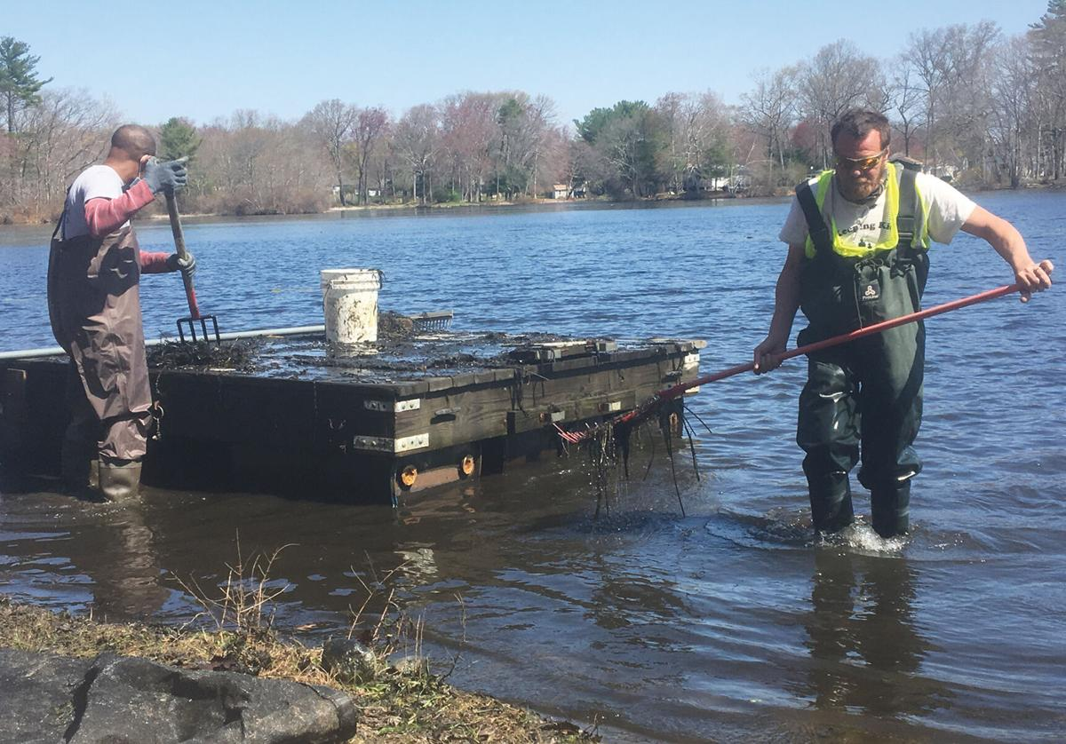 Local nonprofit holds beach cleanup, aims to rid Breezy Lake of milfoil