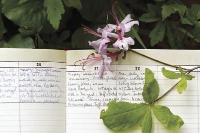 The Naturalist's Journal