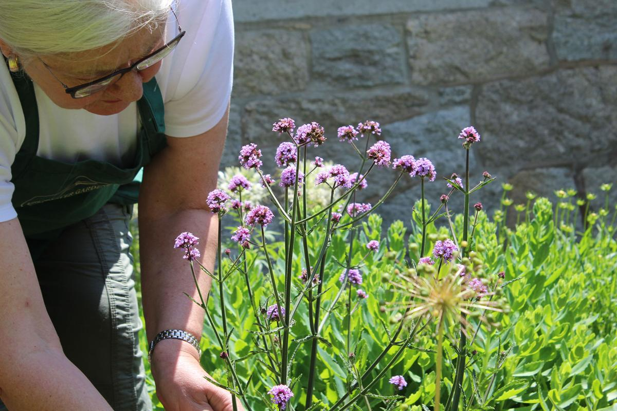 St. Peter's by-the-Sea to be featured in regional garden tour this weekend