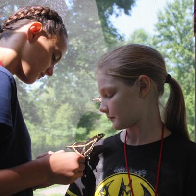 Pollinator Festival helps teach families about pollinating insects at Gorman Nature Center