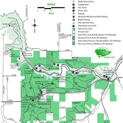 Construction alters access to Mohican-Memorial State Forest