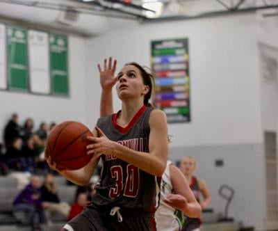 Loudonville's Seboe tops area's Division III-IV All-Ohio picks