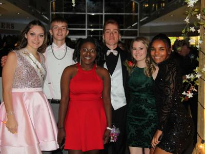 Gallery: 2019 Mansfield Senior Homecoming