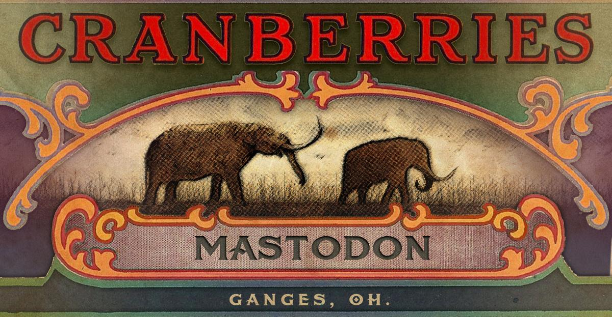 Mastodons, Paleo storytellers, and the Cranberry Bogs of