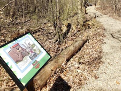 Kingwood Center Gardens Storybook Trail features new book for spring