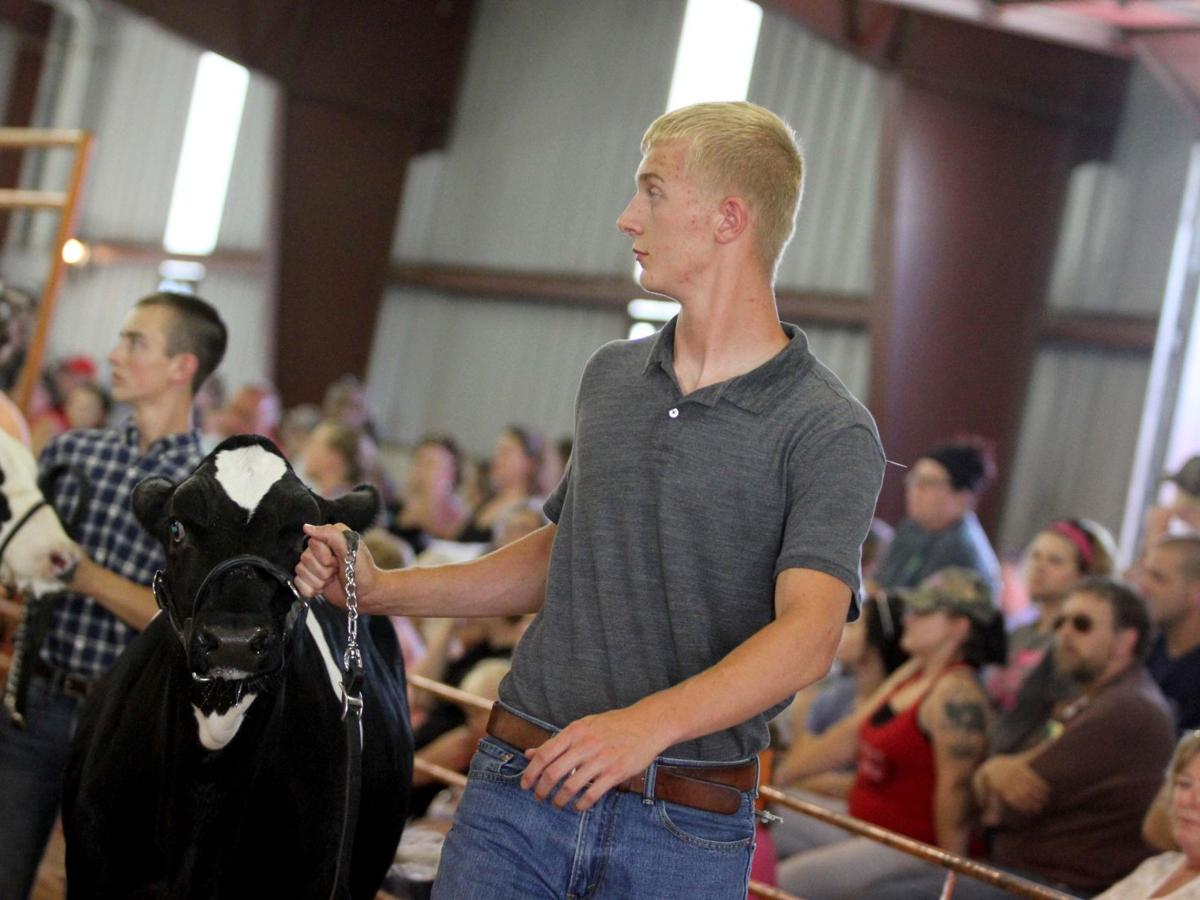 Composure wins the day for dairy feeder showmanship