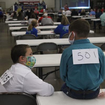 Sales wrap up Richland County Fair for youngsters